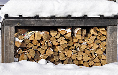 wood pile under the show
